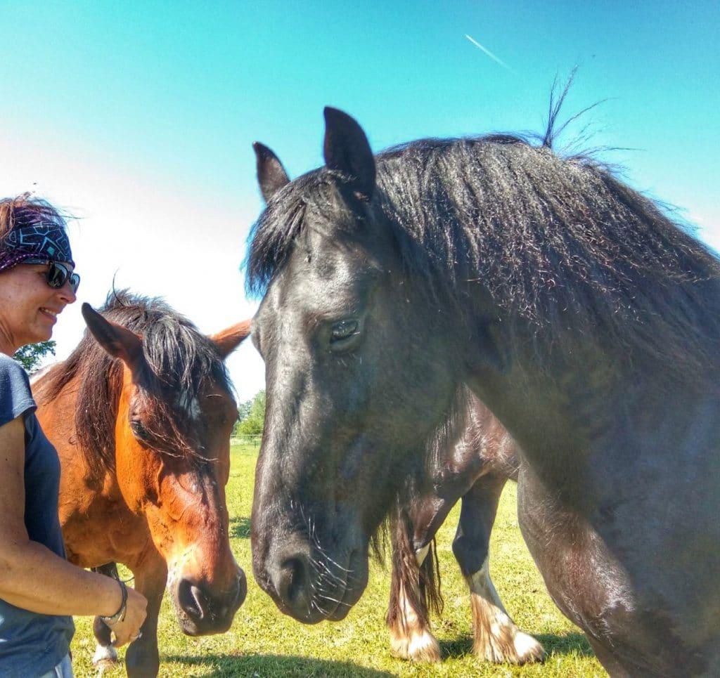 5d8ead795b1 Puur Vrouw - Sandra Coachen met Paarden